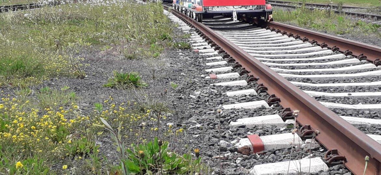 draisinen_Bahnhof_Koemau